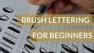 Brush Pen Lettering - How to Start Brush Lettering for Beginners