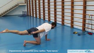 """видео: Развитие силы гребка на суше, упражнение с резиной """"Руки кроль"""""""