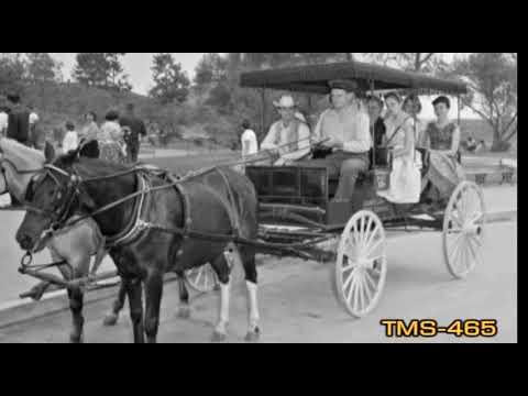 Youtube Horse-Drawn Surreys