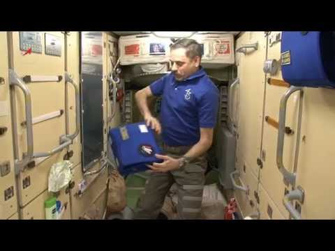 МКС. Утренние процедуры. Как космонавты чистят зубы?