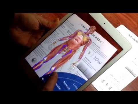 Anatomy 4D Body