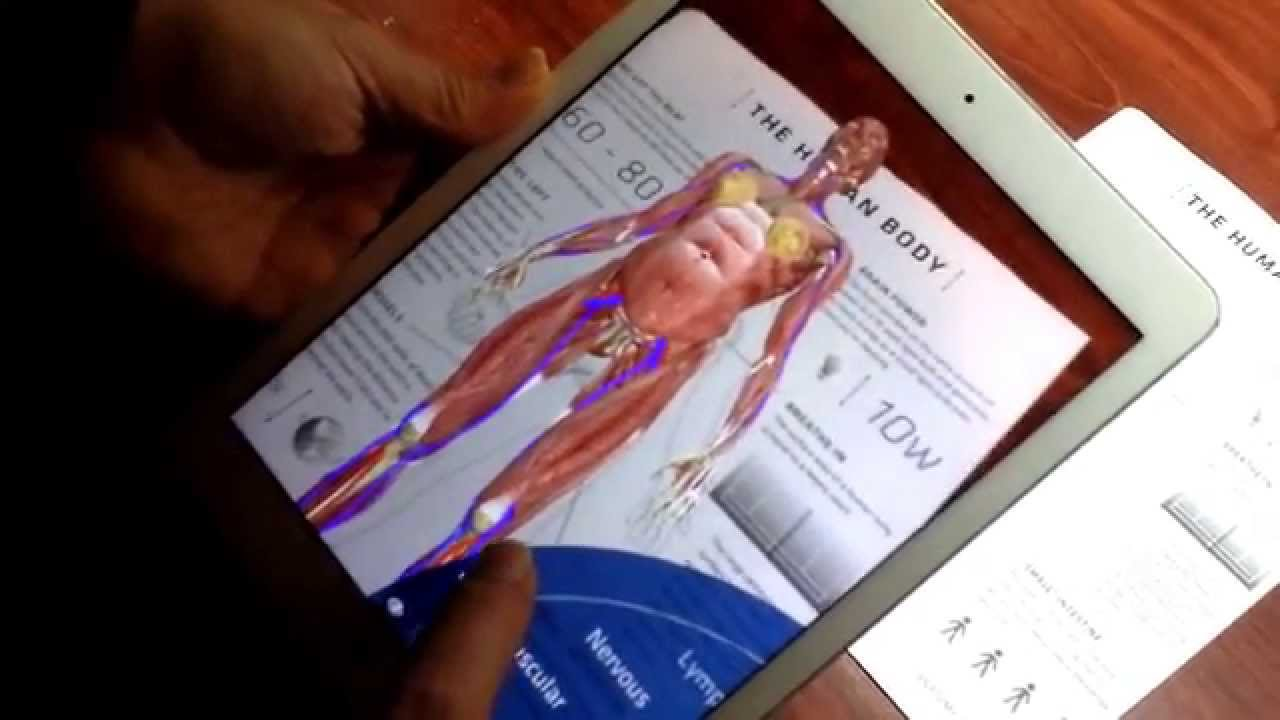 Anatomy 4D Body - YouTube