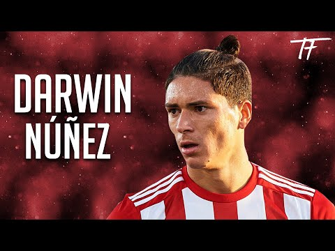 Darwin Núñez - Welcome to Benfica - 2019/20
