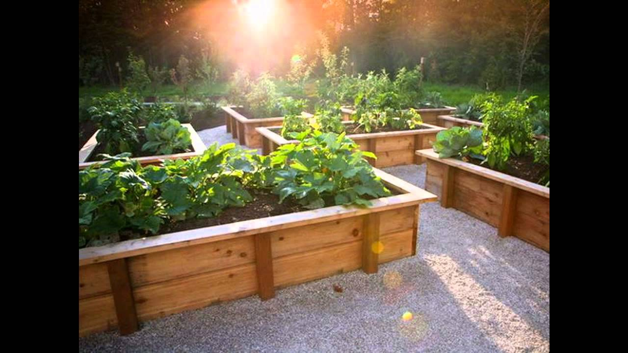 Awesome raised bed vegetable gardening   YouTube