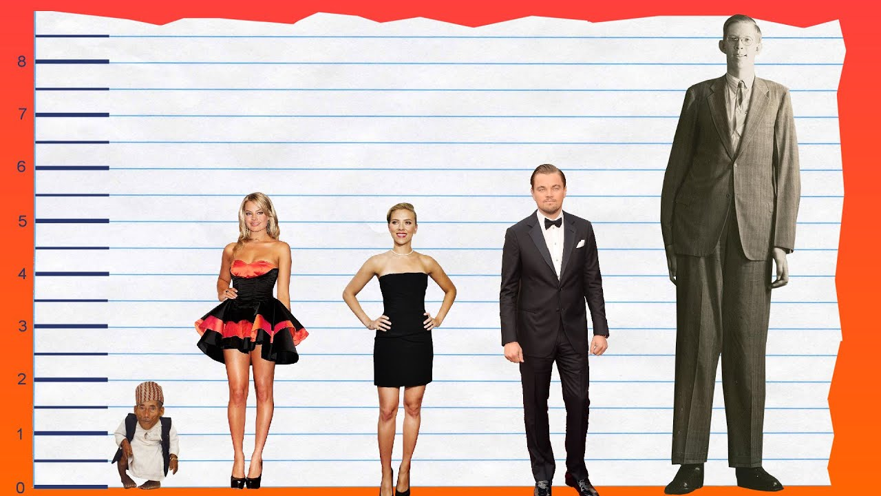 How Tall Is Margot Robbie  Height Comparison  YouTube
