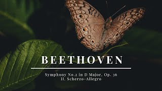 Beethoven - Symphony No.2 in D Major, Op. 36 - II. Scherzo-Allegro