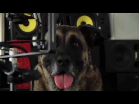 Masters Of Sound - Episode 3: Don't Wag The Dog