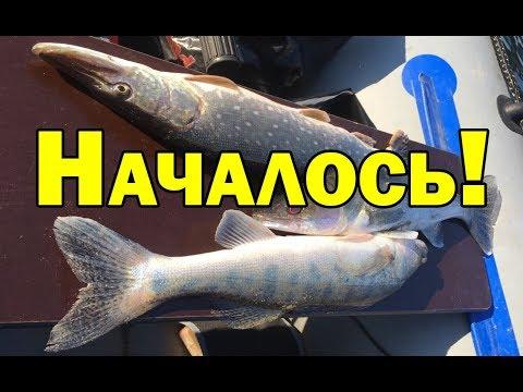Спиннинг. Рыбалка 2019. Щука весной.на джиг