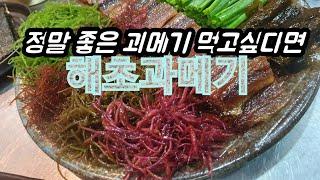 대구맛집 장기동 해초과메기 쫀득하고 쫄깃한 과메기가 있…