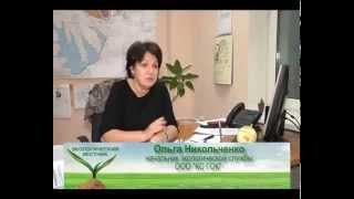 Экологический вестник № 22 (СТС-Биробиджан)(Новые способы и меры, с помощью которых предлагают россиянам бороться с несанкционированными свалками,..., 2014-10-20T02:57:10.000Z)