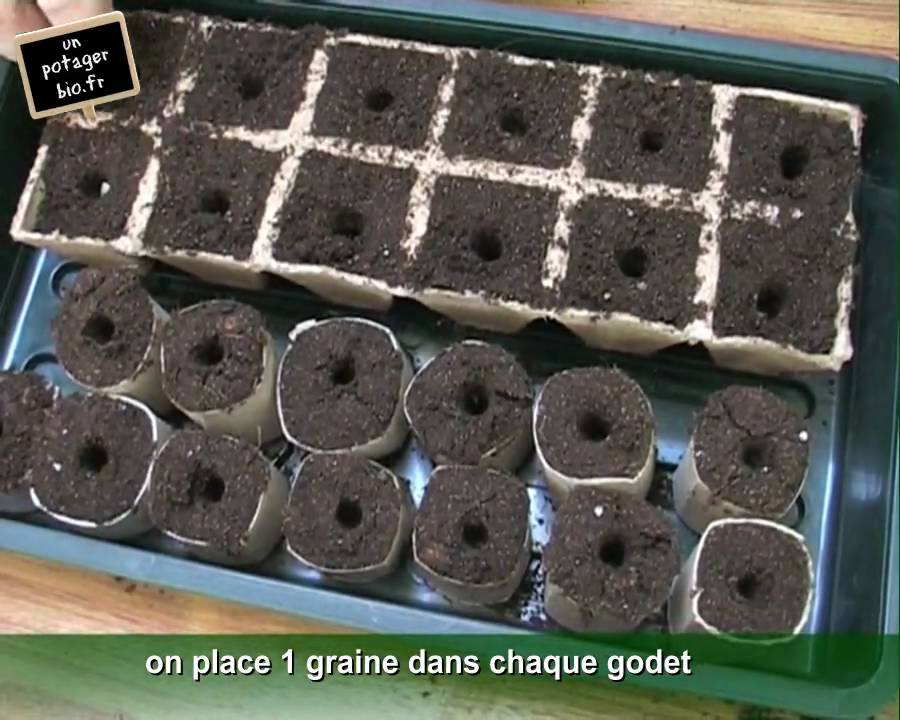 semis de courgettes en pots biod gradables youtube. Black Bedroom Furniture Sets. Home Design Ideas