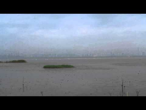 Timelapse out on the Mudflats (Deep Bay)