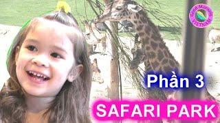 Bé Peanut Đi Công Viên Safari Park (Phần 3) Peanut Đi Xe Điện Ngắm Hưu Cao Cổ, Sư Tử