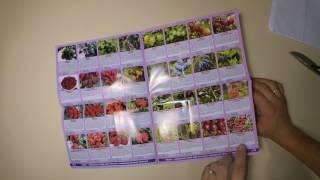 видео Каталог растений