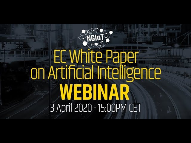 EC White Paper on Artificial Intelligence