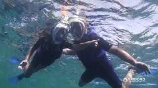 видео Как выбрать маску для подводного плавания взрослому и ребенку: советы и отзывы дайверов. Маска для подводного плавания какой фирмы лучше?