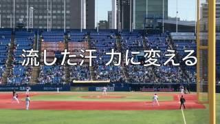 2017/3/17 対東京ヤクルトスワローズ戦@神宮球場 <歌詞> ぶつけろ熱...