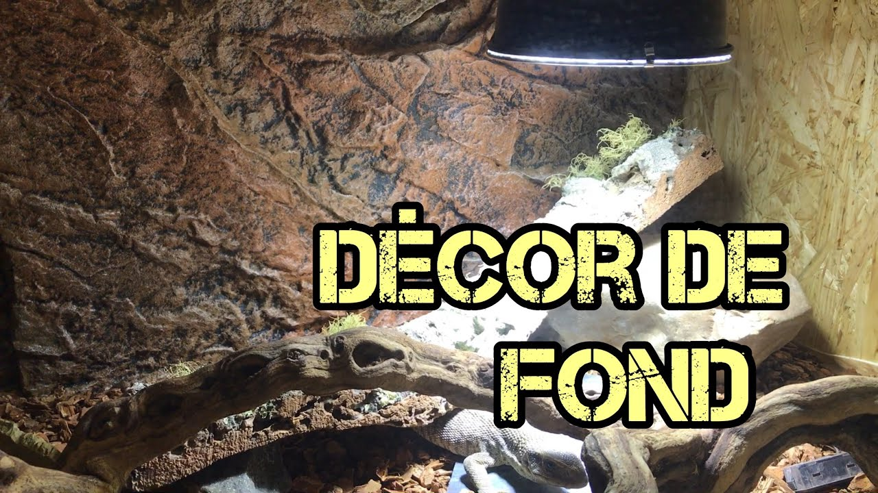 Decor De Fond Aquarium Pour Terrarium Youtube