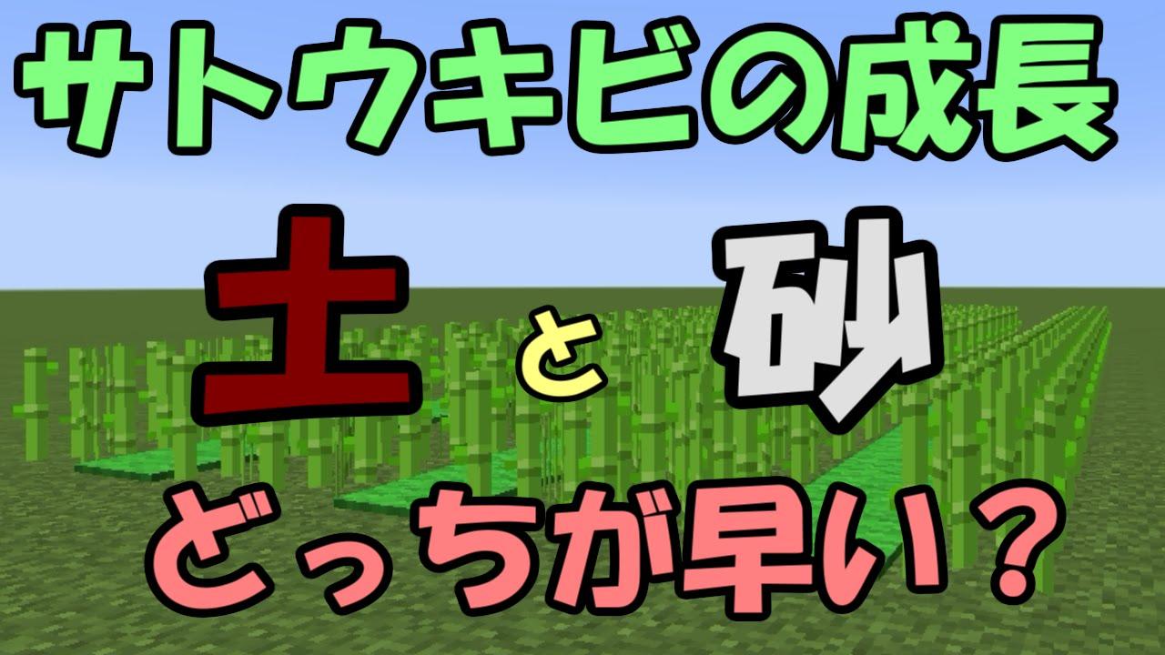 サトウキビ 畑 マイクラ