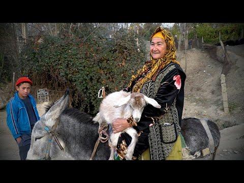 В горах Узбекистана