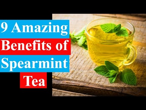 9 Amazing Benefits Of Spearmint Tea | Anti-Inflammatory & Fungal Activity Benefits