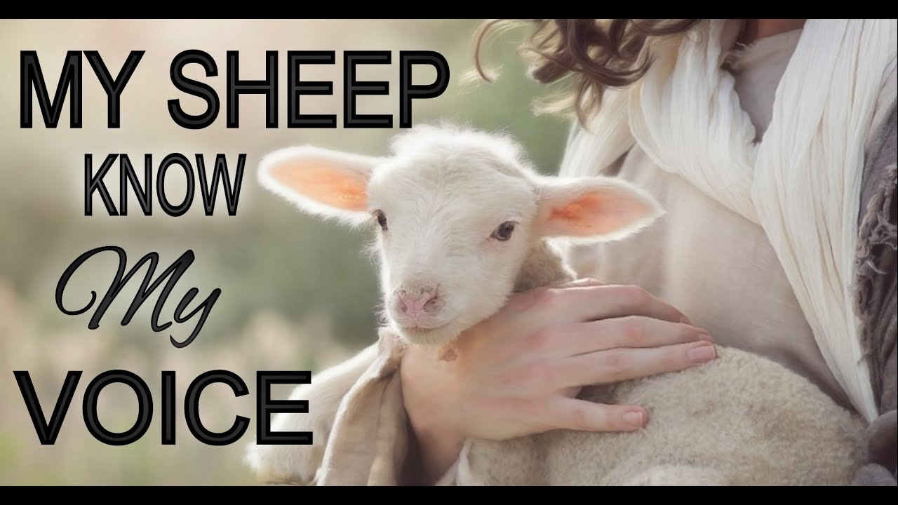 """My Sheep Know My Voice..."" Resistance... (John 10:27-30/John 10:2-5)"