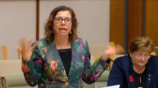 Parliament - 19 October 2017 - National Broadband Network