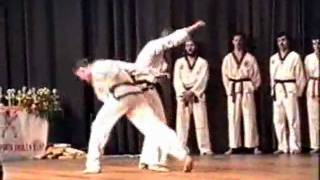 Tae-Kwon-Do Sparring
