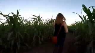 Gopro Corn Maze