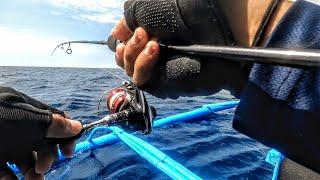 Sunday Fun Fishing| New Species unlocked! | Ultralight Jigging