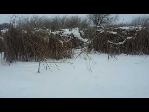 Зимняя охота Новоузенск