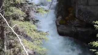 Spectacular Jasper National Park