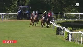 Vidéo de la course PMU GRAND PRIX DU LION D'ANGERS