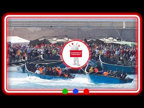 Plan2020: inmigración Canarias