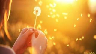Música Positiva para purificar el Hogar la casa - Muy Relajante con Energia Positiva 2017