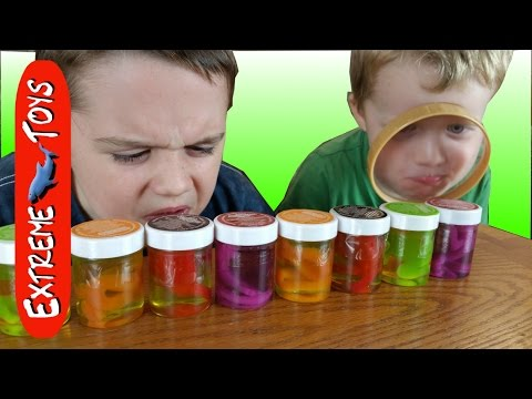 Crazy Candy eating Challenge.  Gross candy snakes, lizards, and frogs.