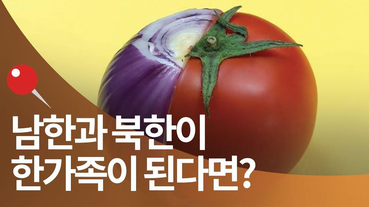 남한과 북한이 한가족이 된다면? 통일하면 벌어질 일들 총정리(스톱모션)