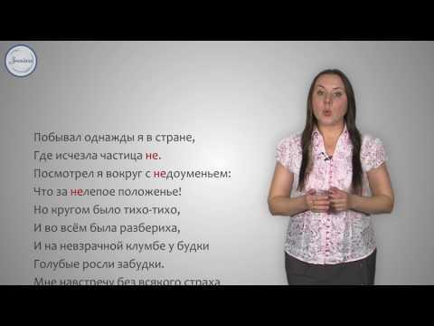Русский 5 Правописание НЕ с именами существительными