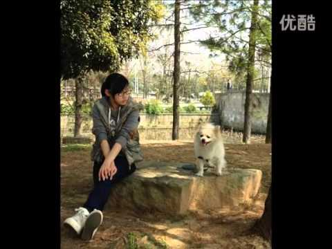 【中国好声音张新】送给粉丝的礼物 《someone like you》The Voice of China - Super Tenor Zhang Xin