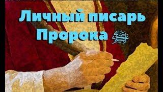 Любимец Всевышнего 58 часть. Любимец и спутник Пророка (ﷺ)