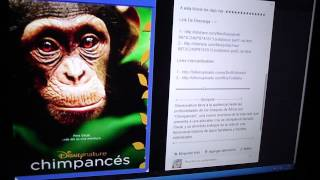 CHIMPANCÉS - [2012] [Audio Latino] [BRrip] [2 Link] [BITSHARE] [BILLIONUPLOADS]
