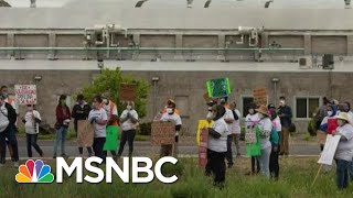 OSHA Oddly Reticent Despite Worker Peril In Coronavirus Era | Rachel Maddow | MSNBC