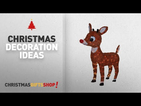 Top Rudolph Outdoor Christmas Decorations: ProductWorks 26-Inch Pre-Lit Rudolph the Red-Nosed