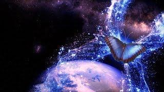 Efekt motyla w nauce, życiu codziennym i kinematografii