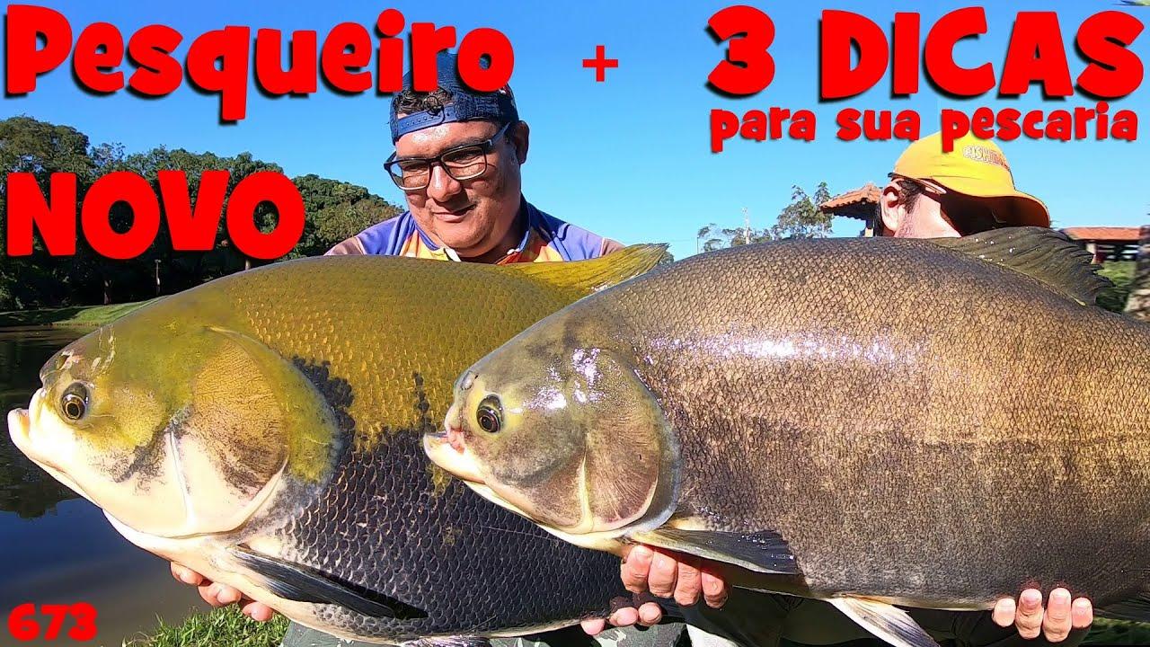 Pesqueiro NOVO(muitos TAMBAS) e 3 super DICAS para sua pescaria