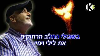 עופר לוי - ציפור השמש - שרים קריוקי ofer levi
