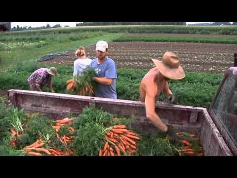 SMALL FARMS (FARMING IN USA)
