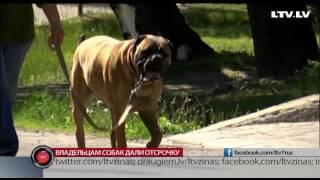 Владельцам собак дали отсрочку