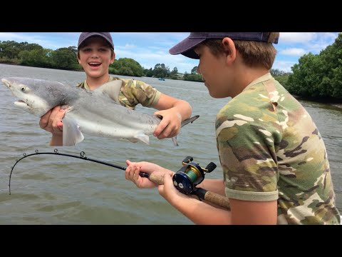 Thumbnail: Shark Fishing Logan River - Stabbed By Worlds DEADLIEST Fish