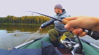 НОВОЕ МЕСТО! Рыбалка на щуку и ПОЛНЫЙ ЛЕС ГРИБОВ! Спиннинг с лодки!